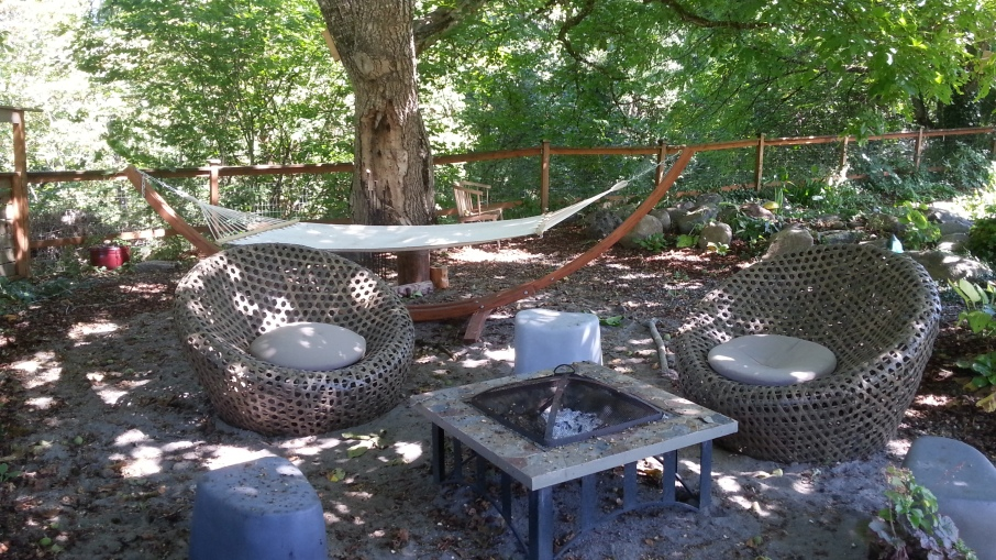 Firepit and hammock